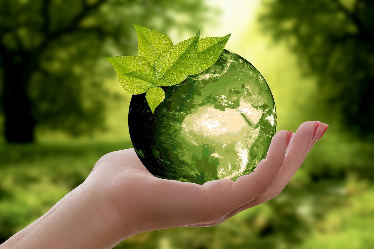 6 consejos para hacer un buen reciclaje