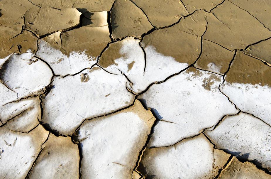 ¿Qué es el cambio climático y cómo podemos frenarlo?